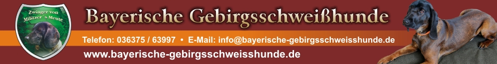 bayerische-gebirgsschweisshunde-lang